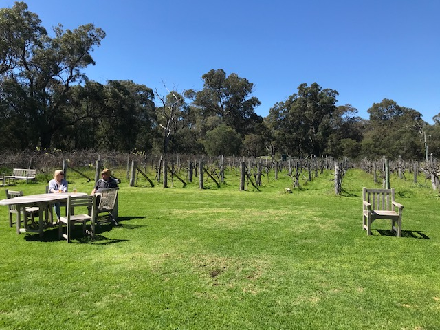 Cape Bouvard winery