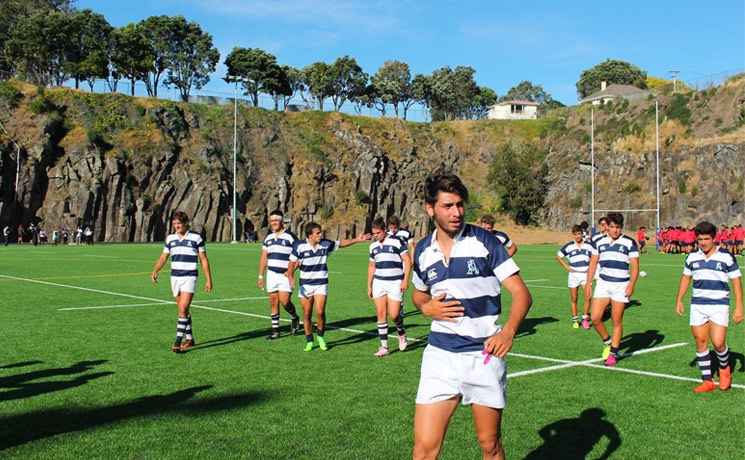 stage rugby nz