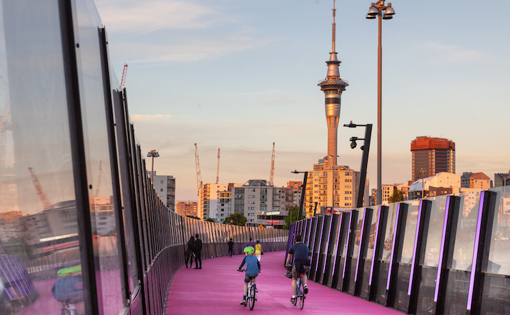 Piste cyclable rose auckland