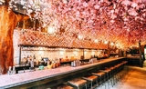 The Spring Blossom Pop-up Bar rooftop