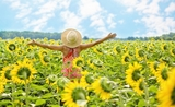 Sunflowers girl happy Pixabay