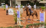 equitation cambodge