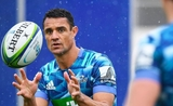 Dan carter auckland blues