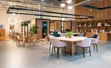 co working spaces auckland