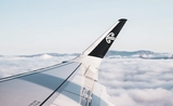 air new zealand voyages domestiques
