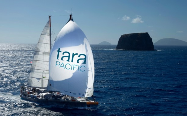 1-TARA-PACIFIC-Spinaker-©-F.Latreille-Tara-Expedition-Fondation